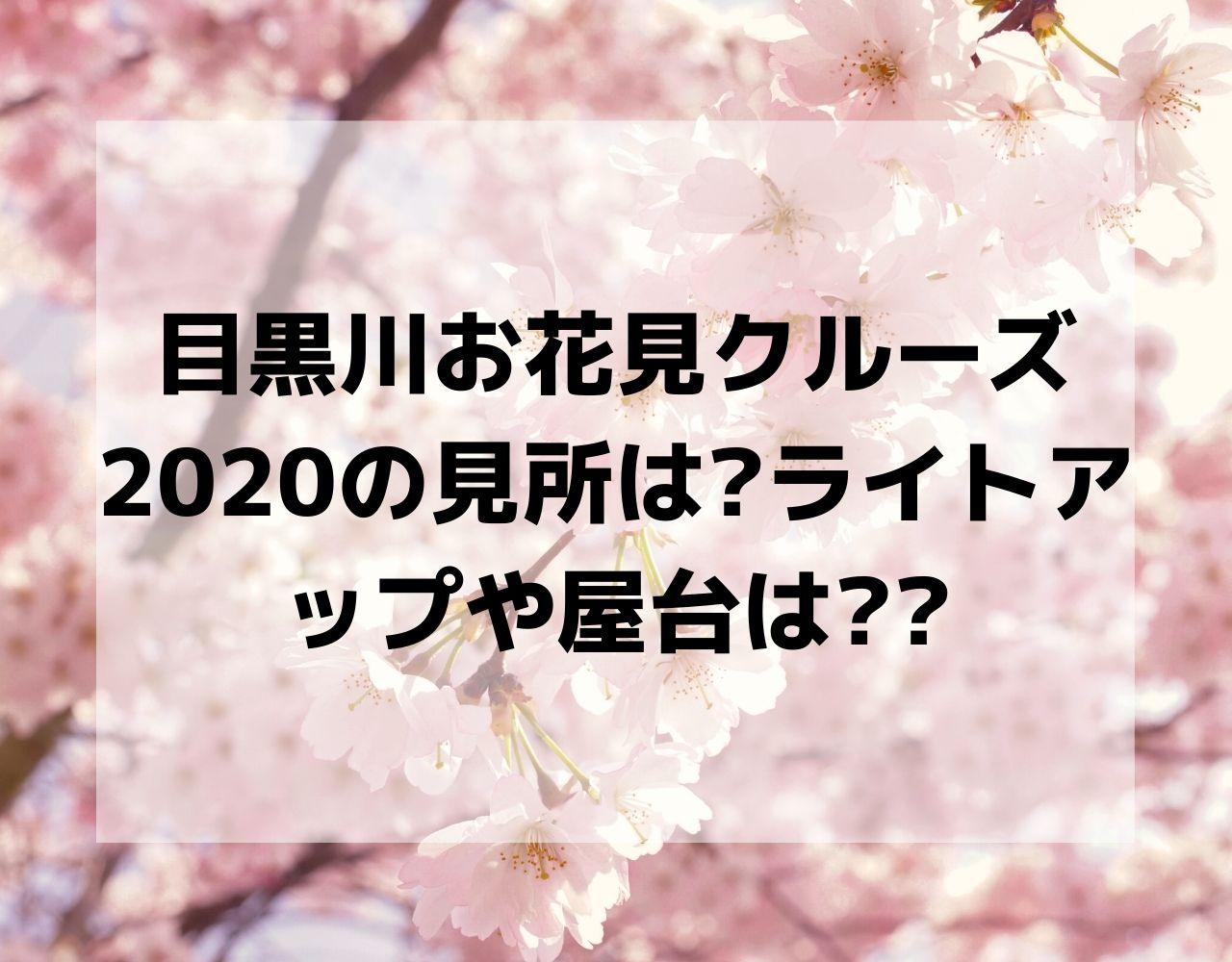 目黒 お花見 桜祭り